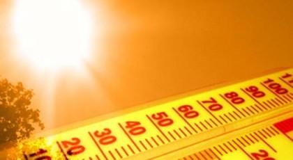 Из-за аномальной жары в Германии погибли не менее 12 человек