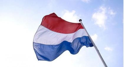В Нидерландах зафиксирована новая вспышка птичьего гриппа